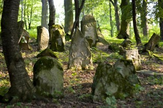 Old Jewish cemetery - visit to Poland